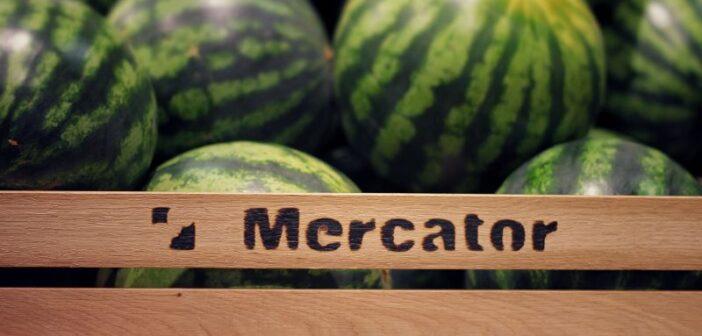 mercator-lubenice